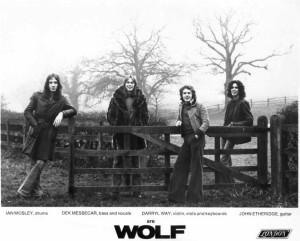 darryl way wolf