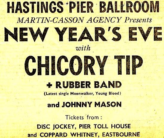 chicory-tip1
